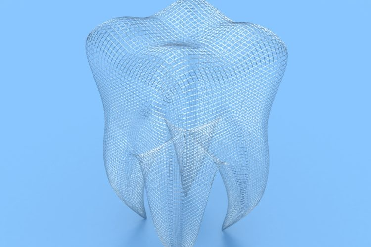 3D Mesh Model of a human tooth
